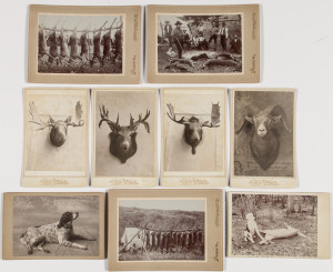 Nine Cabinet Card Photos of Dogs, Taxidermy, and Hunting Scenes